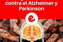 salud/cerebro