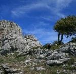 Sardegna Sardinia Sardinien  / http://pecora-nera.eu ... online magazine on Sardinia ... rivista on-line sulla Sardegna ... Online-Magazin über Sardinien