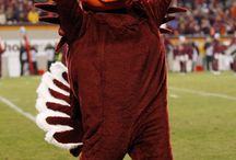 Go Hokies In Memory of Poppa Prater 54' VT  Hall of Fame! / by Elaine Prater
