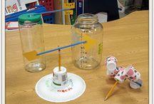 Montessori 1st grade