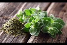 salud con las plantas