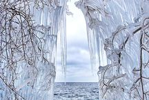 Winter Wonderland  / by Judy Lewis