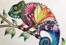 Magic Jungle Chameleons