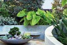 Gardens Decks