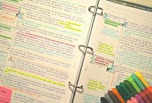 Study Blrr