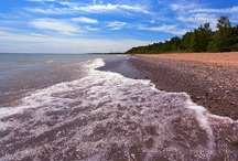 Michigan / by Paula Bailey-Dudgeon