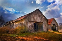 Barns / by Sue Curtsinger