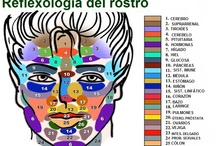 REFLEXOLOGÍA / by paisdelos