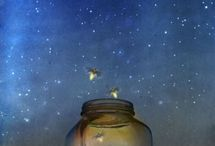 fanciful fireflies / fireflies and lightning bugs