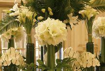 Lobby Flower