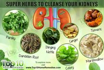 Kidney Cleansing Herb