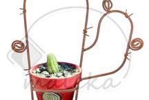 Porta cactus