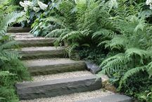 Garden Steps and Boundaries