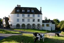 The Bear of Rodborough Hotel in Stroud / Retreat to The Bear on Rodborough Common, nestled amongst the rambling hills of beautiful National Trust land with the odd roaming cow venturing in between. Sink into the ultimate escapism that's a home away from home.