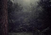 Nature Love / by Sara Zoellick