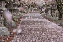 Japão | Japan