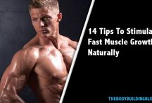 Muscle development / Every type of information that is concerned with muscle growth and development!