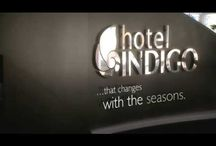 London, UK / Explore the exciting neighbourhoods around Hotel Indigo London Paddington, Hotel Indigo London Tower Hill, and Hotel Indigo London Kensington - Earl's Court. In the most diverse capital of Europe, there's indeed much to discover. Follow the Guide! http://bit.ly/OeIXH0 / by Hotel Indigo