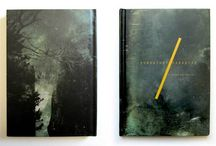 Throwing Muses / About Throwing Muses & including related design work by drummer Dave Narcizo's Lakuna Design #throwingmuses #kristinhersh #4ad