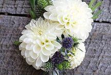 Virágok, virágcsokrok