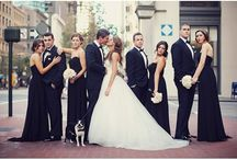 Wedding party / Photography
