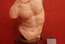 Classical Statuary / A collection of sculpture from Antiquity.