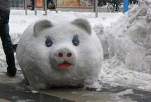 snow fun / by Rebekah Field