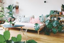 Min första lägenhet