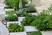 Outdoor Herb Garden / by Ellis Design Group, LLC