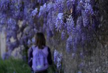 Photos&Dreams by Polina Smirnova / contact me if you like to capture your happiness being in Tuscany! ;) polinca22@gmail.com