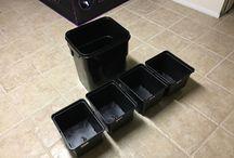 Dutch Buckets System