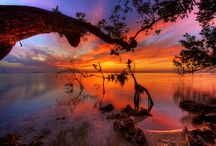 Simply wonderful beauty / by Sha Murdock-Lognion