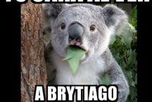 Memes De Brytiago / Los memes de Brytiago
