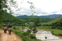 Nature / The beautiful nature of Thailand