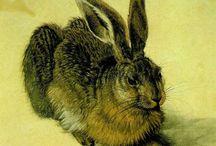 Art  Albrecht Dürer