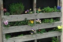 Fun Garden Ideas