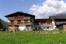 Oostenrijk | Österreich | Austria / Huur een vakantiehuis in Oostenrijk! Je hebt de keuze uit een groot aantal prachtige wintersport chalets. Zowel in de zomer als in de winter is Oostenrijk een perfect vakantieland. In de winter ligt er een dik pak sneeuw op het dak van jouw vakantiehuis en in de zomer liggen de vakantiehuizen op prachtig groene bergweiden. Typisch is de zee van ruimte rondom veel vakantiewoningen in Oostenrijk, wat zeker voor gezinnen met kinderen ideaal is.