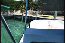 Dream Island Getaway: Turtle House / @ http://themuddykitchen.com