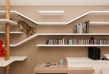 Ho High Hoopla / Cat shelves, climbing walls and gantries. Ideas for indoor spaces for our felines.