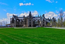 Our Visits to Biltmore Estate in Asheville / by Janet Cooper-Bridge
