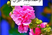 ISLAM IN WORDS N PICS. / Islamic sayings n muslims.
