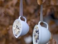 bird feeders and houses / by Sandra Barton