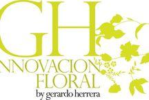 GH / Innovación Floral