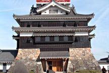 Japanese Catles