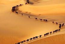 The Deserts of the World / Rozne pustynie na całym świecie