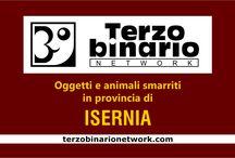 ISERNIA / Oggetti e animali smarriti in provincia di Isernia