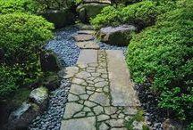 Japanese garden / ihanaa