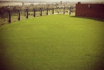 Easy Turf Rooftops / Easy Turf makes makes rooftop areas look spectacular!