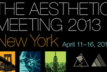 The Aesthetic Meeting 2013