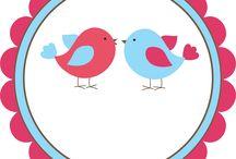 Immagini uccellini